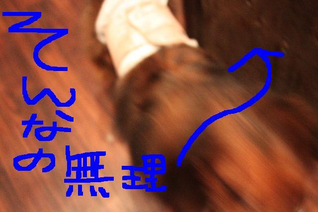 b0130018_23544195.jpg