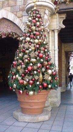 TDSのクリスマス_f0204368_1151042.jpg