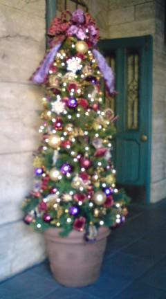 TDSのクリスマス_f0204368_1163814.jpg