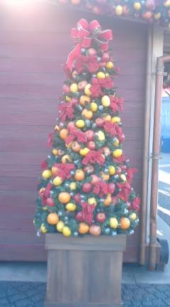 TDSのクリスマス_f0204368_11916100.jpg
