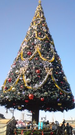 TDSのクリスマス_f0204368_1214772.jpg