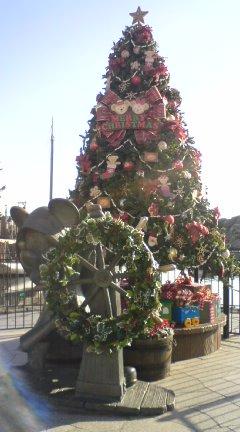 TDSのクリスマス_f0204368_122283.jpg