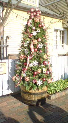TDSのクリスマス_f0204368_1225325.jpg