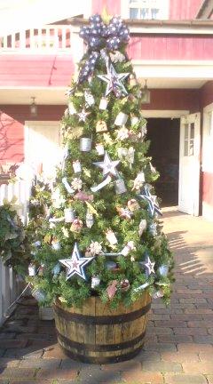 TDSのクリスマス_f0204368_1231423.jpg