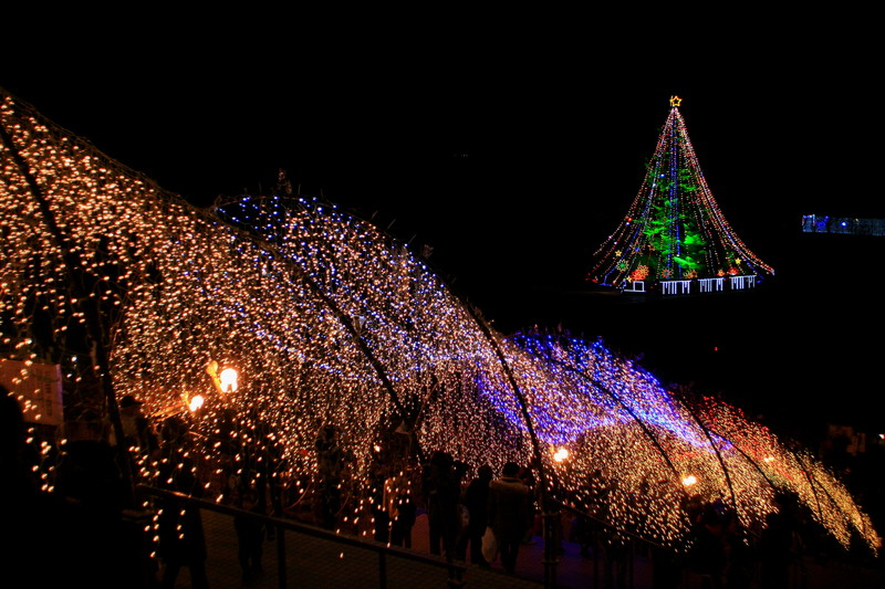 Merry Christmas_c0247982_10445123.jpg