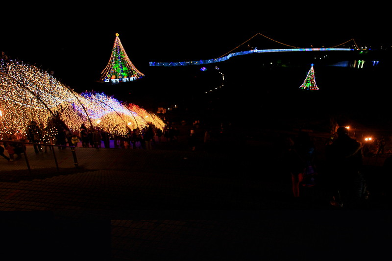Merry Christmas_c0247982_10451565.jpg