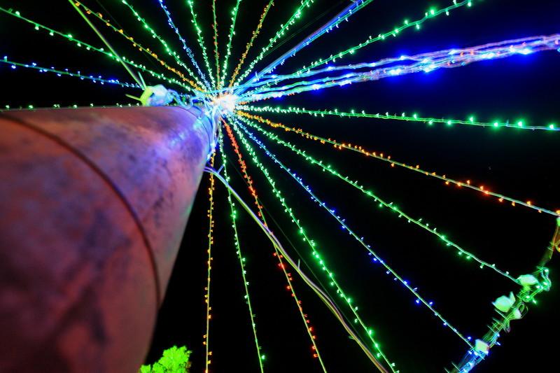 Merry Christmas_c0247982_10463639.jpg