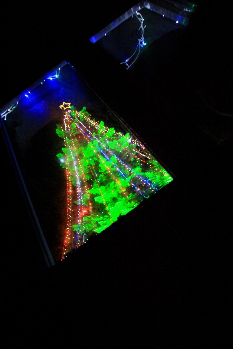 Merry Christmas_c0247982_1048161.jpg
