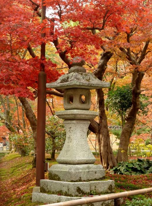 晩秋の京都 24_b0093088_10527100.jpg