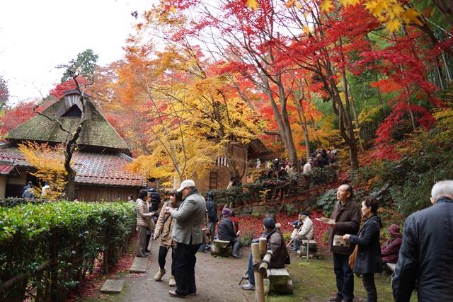 日本一の紅葉 教林坊、戦争は嫌 日本の真の武器、TPP参加が日本の繁栄、阪急うめだの素敵なメルヘン④_d0181492_16164119.jpg