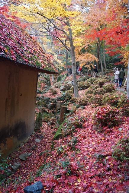 日本一の紅葉 教林坊、戦争は嫌 日本の真の武器、TPP参加が日本の繁栄、阪急うめだの素敵なメルヘン④_d0181492_16211091.jpg
