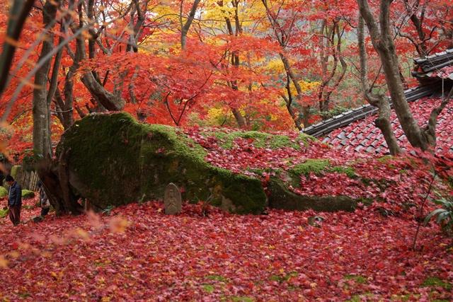日本一の紅葉 教林坊、戦争は嫌 日本の真の武器、TPP参加が日本の繁栄、阪急うめだの素敵なメルヘン④_d0181492_16231091.jpg