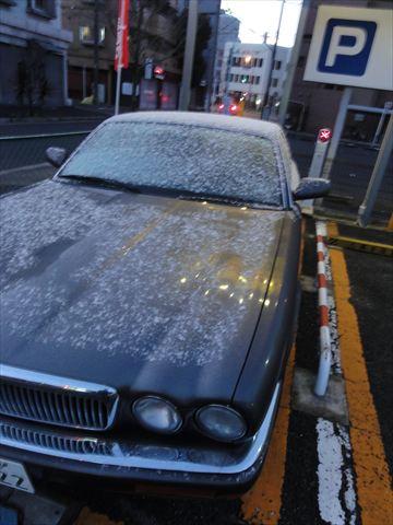 名古屋、初雪_f0034816_6385039.jpg
