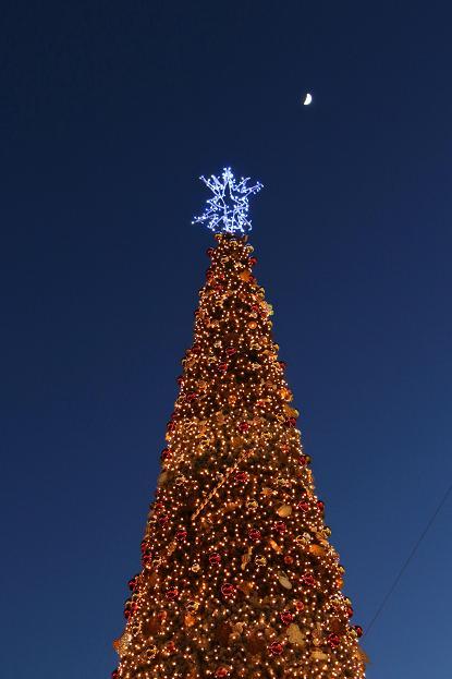 クリスマスの季節 想いを 届けて...。_d0150720_12585486.jpg