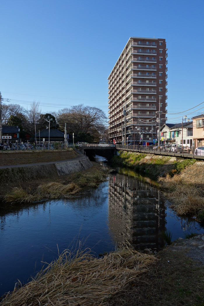 SONY RX100 で撮った見た坂川 ~入魂のRX100~_c0223825_23221759.jpg