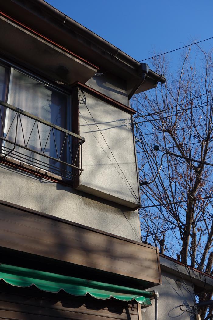SONY RX100 で撮った見た坂川 ~入魂のRX100~_c0223825_2324299.jpg