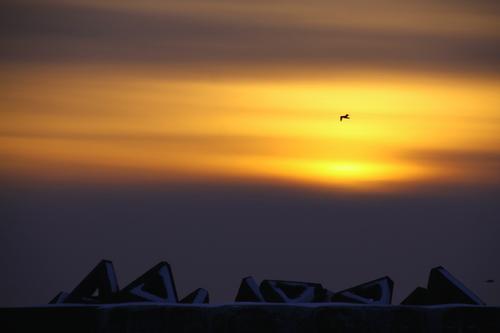 こまった時の夕焼け写真 12月22日_f0113639_16185332.jpg