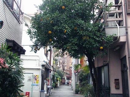 大阪・中崎町 1_a0099744_1914474.jpg