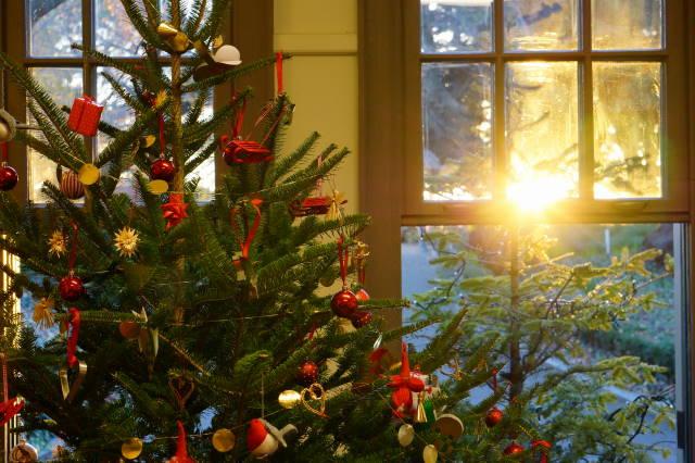 Merry Christmas _a0257652_15483094.jpg