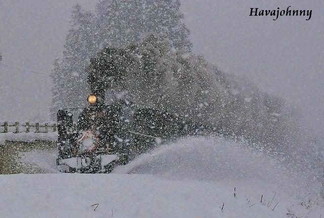 豪雪の中の奇跡の1枚_c0173762_23505135.jpg