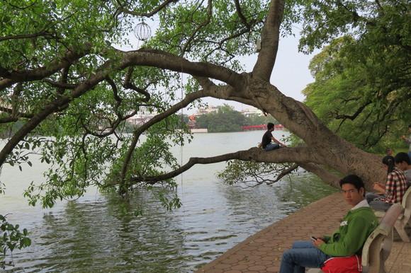 SKY121225 さわやかな風が湖面を伝わり心地よいティンテイホアン通り沿いの遊歩道が続_d0288367_1481214.jpg