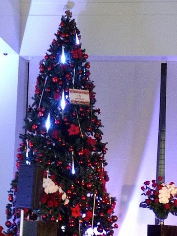 クリスマスコンサート♪_e0040673_14334288.jpg