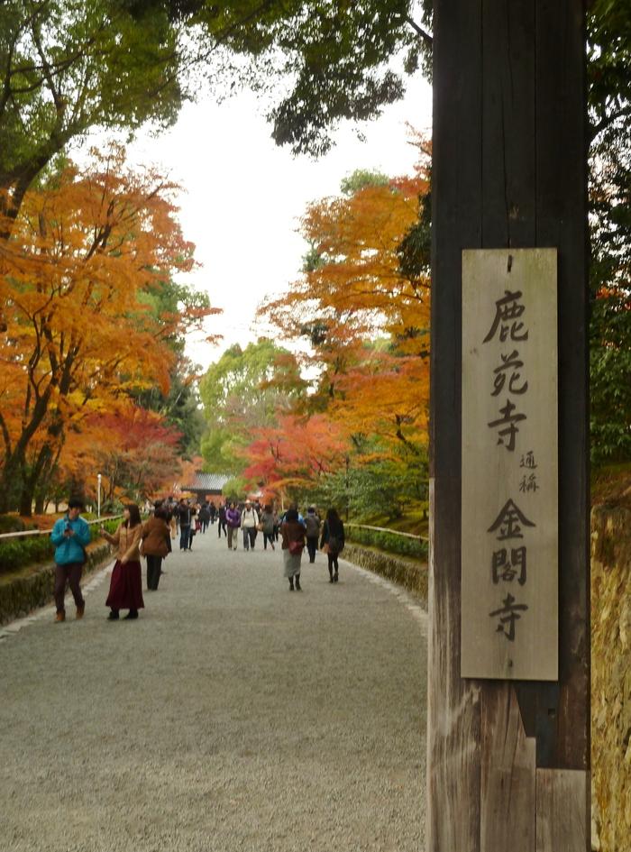 晩秋の京都 25_b0093088_9542244.jpg