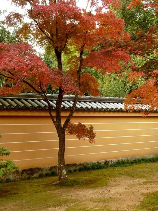 晩秋の京都 25_b0093088_956134.jpg
