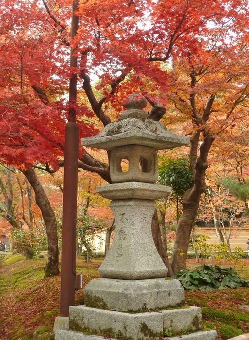 晩秋の京都 25_b0093088_956387.jpg