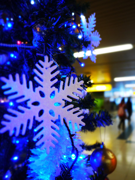 12月21日 今日の写真_b0103798_6354875.jpg