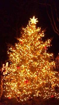 クリスマスin軽井沢_d0085018_13265984.jpg