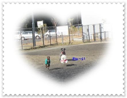 b0167519_2111929.jpg