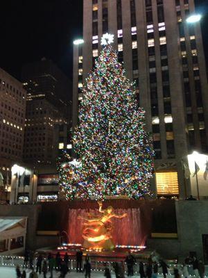 ニューヨーク☆クリスマスシーズンの夜景☆_f0095325_135241.jpg