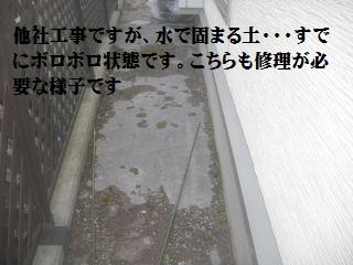 f0031037_1943998.jpg