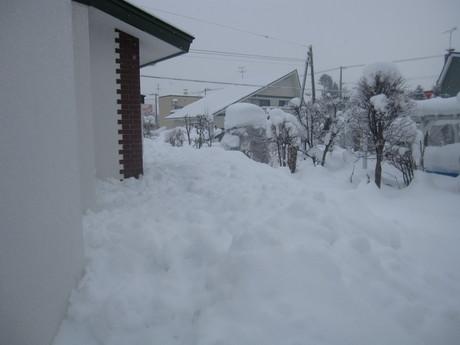 早くも凄い雪の庭とお家ご飯_a0279743_11371161.jpg