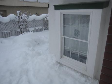 早くも凄い雪の庭とお家ご飯_a0279743_1140178.jpg