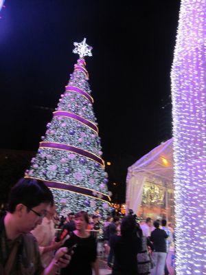 Joy to the World!    _b0194056_17174652.jpg