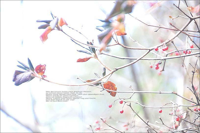 f0198771_044926.jpg