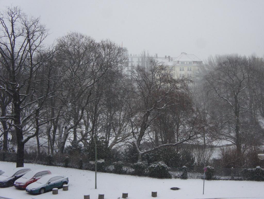 Berlin,また雪!_c0180686_22182223.jpg