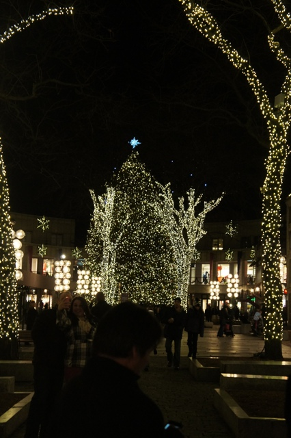 Merry X\'mas 2012 です_f0083294_13554488.jpg