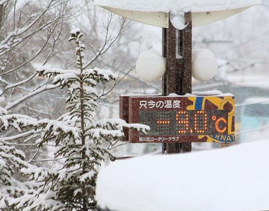 雪がとっても似合います♪_c0155902_894369.jpg