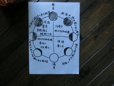 少彦名神(スクナヒコナノカミ)の船_a0203003_14312968.jpg