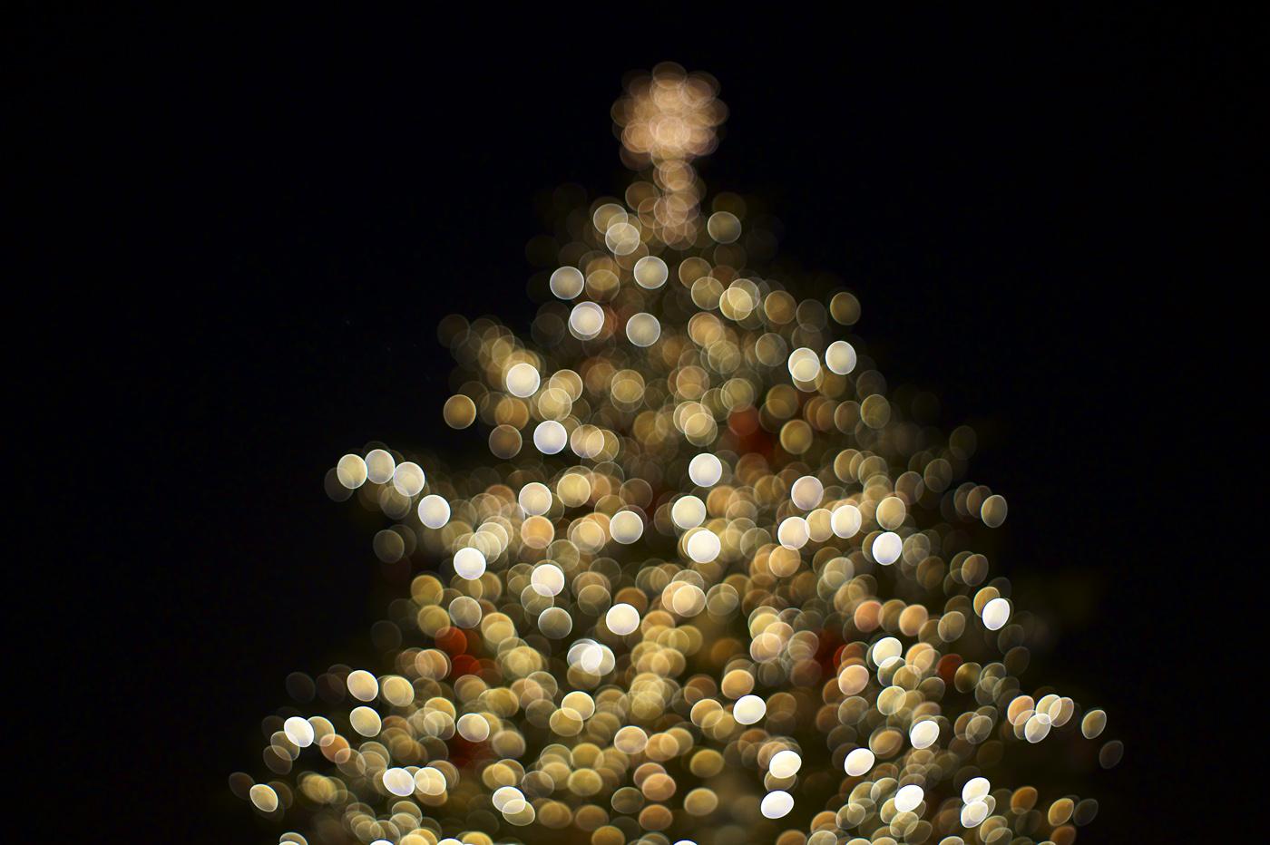 メリー・クリスマス、2012。_c0120903_21235.jpg