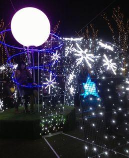 私のクリスマス_f0231309_1459646.jpg