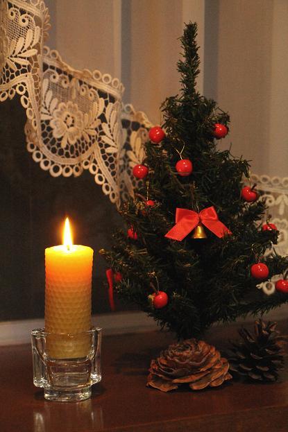 メリー クリスマス_d0150720_8224155.jpg