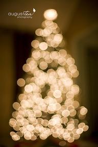 メリークリスマス_d0238033_8343673.jpg