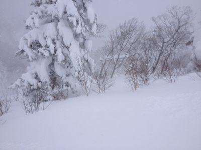 北海道4日目 ☆キロロスノーワールド_c0151965_11335698.jpg