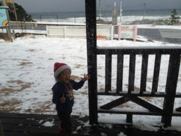 雪かき終了しました_f0009169_1257523.jpg