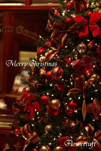 Merry Christmas!_c0137872_1942811.jpg