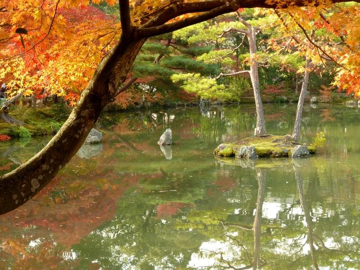 晩秋の京都 26_b0093088_1525599.jpg